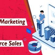 eCommerce Website Development Company